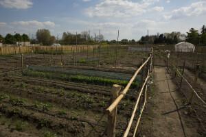Una centralina registra l'umidità del terreno e le condizioni meteo per garantire la corretta irrigazione automatizzata degli orti (ph. Umberto Costamagna).