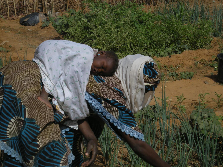 Donna al lavoro nell'orto a Niamey