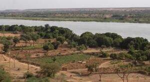 Gli orti delle donne nella regione di Niamey