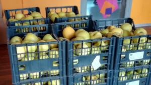 Ceste di mele Monvisotta per i soci del GAS Roccafranca per Spesa SOSpesa